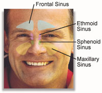 Click Here To See All Sinus Relief Products