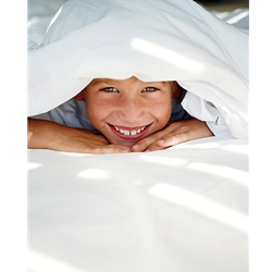 Allergy Control® ECONOMY Low Profile Box Spring Encasing - CA Long Twin