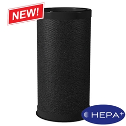 Old HEPA+ 3000 Optional Carbon VOC Filter