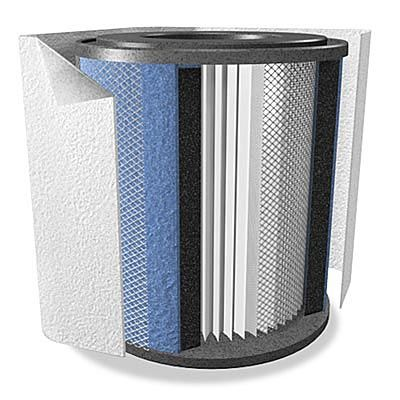 Austin Air Bedroom Machine Replacement Filter Pack (FR402)